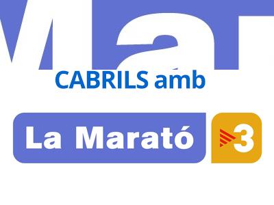 lamarato-tv3-cabrils